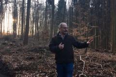 Dieter Allig erklärt die Aufforstung nach dem Einschlag in den Fichtenbestand